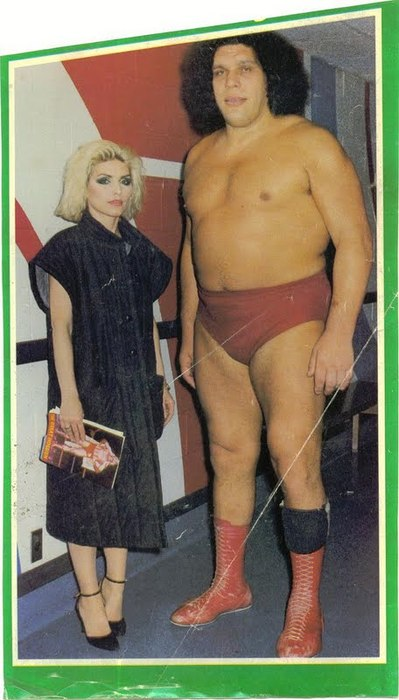 debbie harry and andre the giant